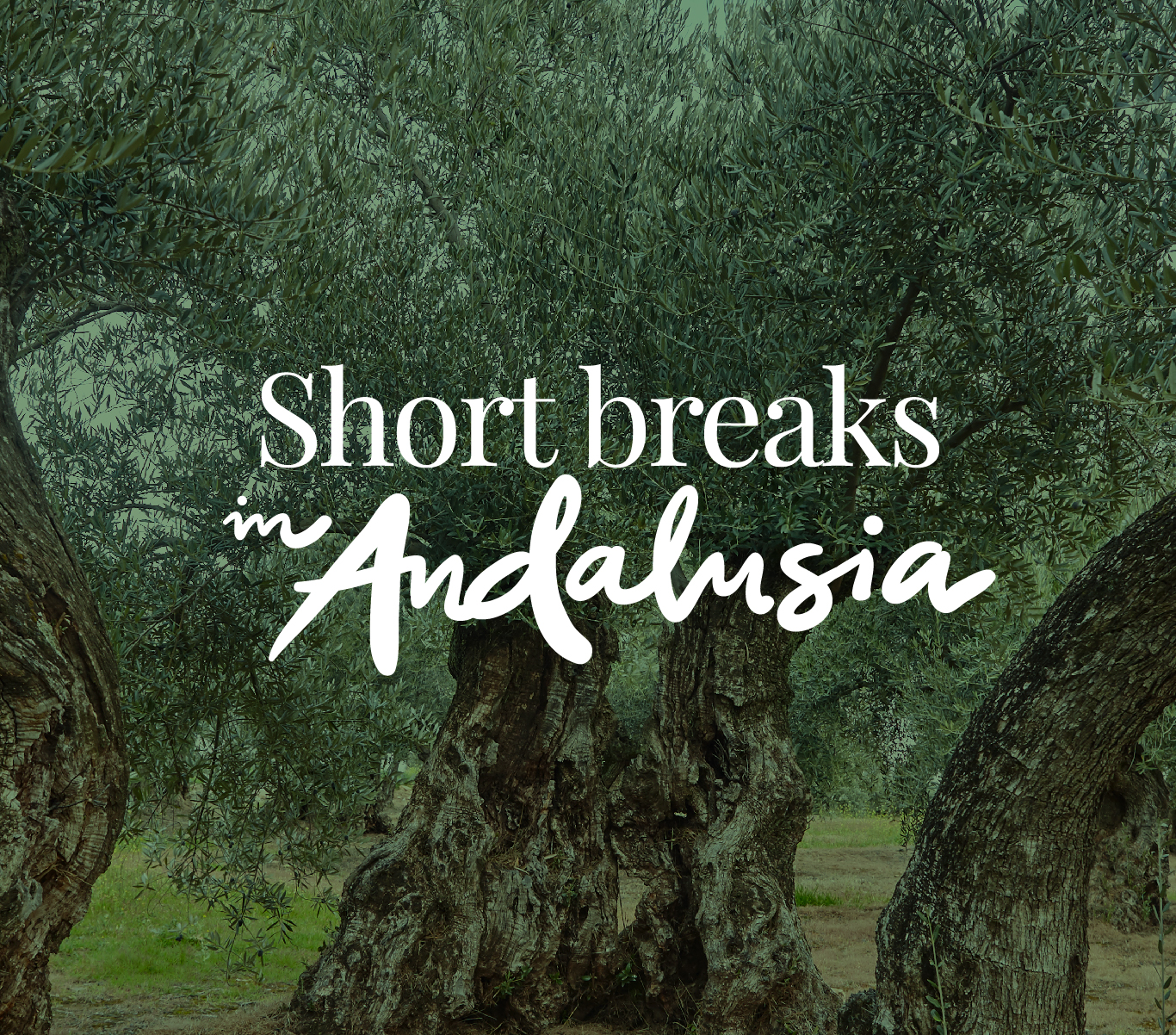 Short breaks in Andalusia