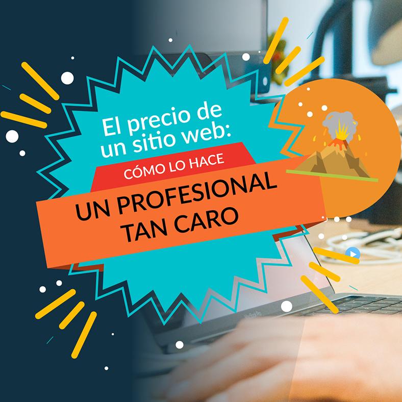 """Imagen ilustrativa para la entrada """"El precio de un sitio web (3): ¿cómo lo hace un profesional tan caro?"""""""